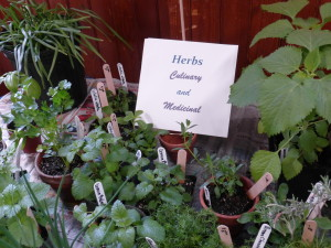 Annual plant sale sign